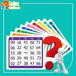 bingo-qu-est-ce-que-cest